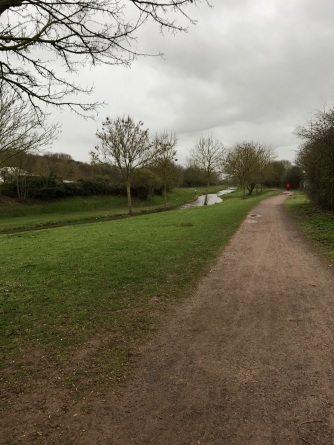Not quite such a handsome towpath in Taunton. But even flatter than Brussels so I liked it!